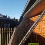 Side of house enclosure – Flagstaff Hill